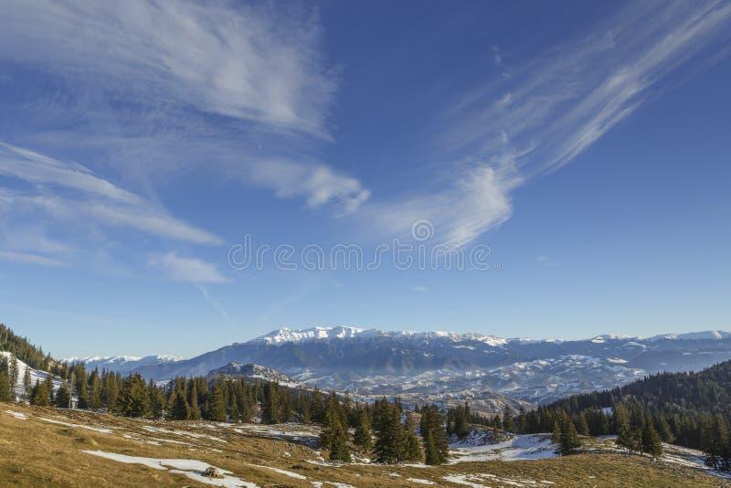 Bucegi góry widzieć od Zanoaga łąki, Piatra Craiului Natio obraz stock