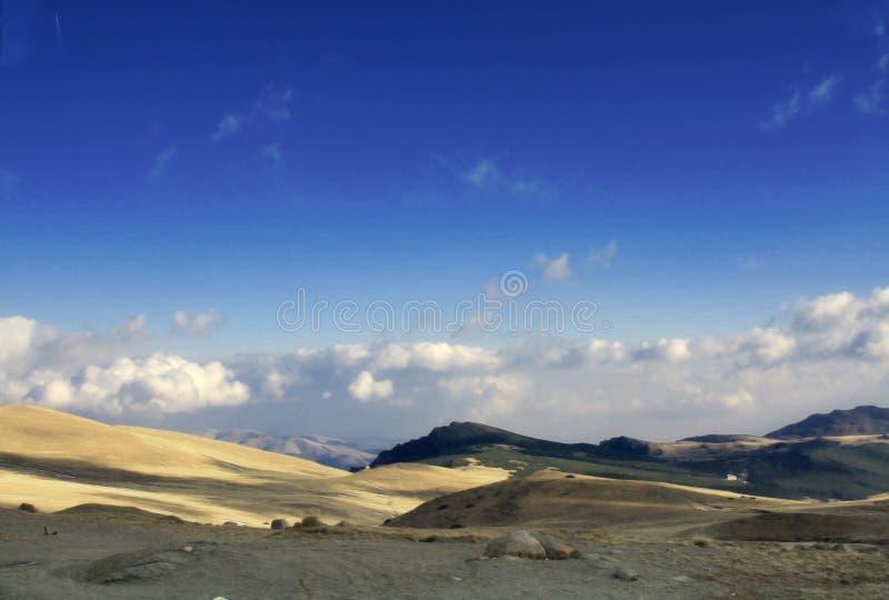 Download Bucegi Mountains stock photo. Image of pine, edges, alpine - 6834858