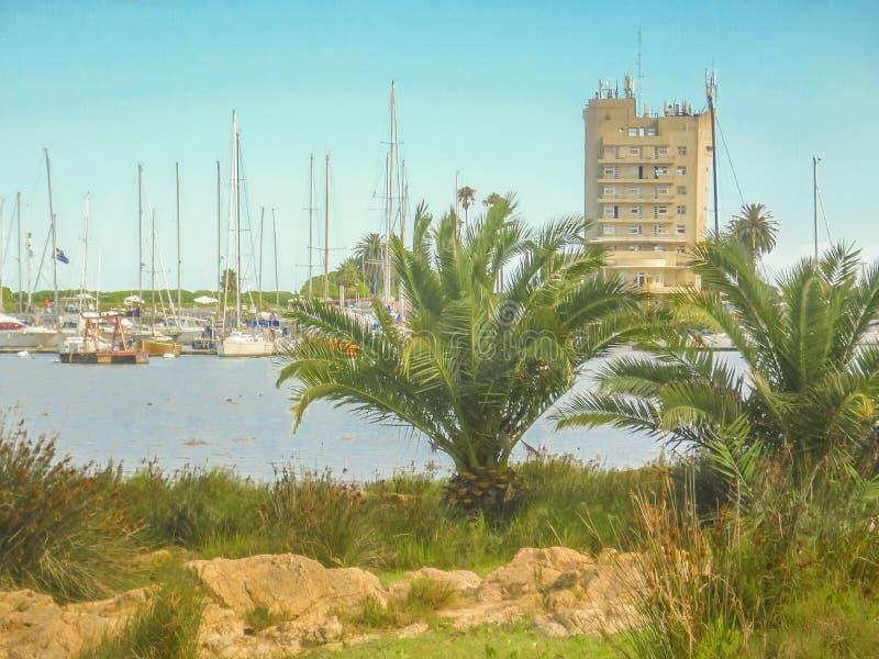 Buceo port, Montevideo, Uruguay royaltyfri foto