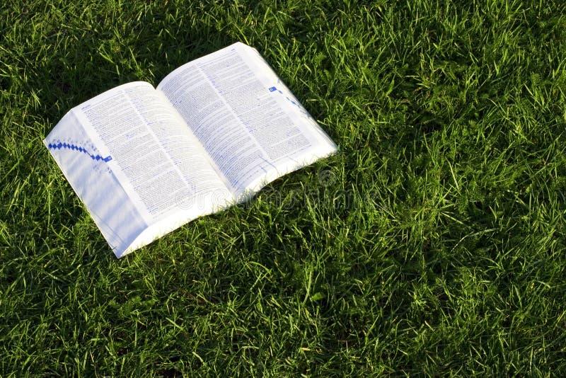 Buch auf Gras lizenzfreies stockfoto