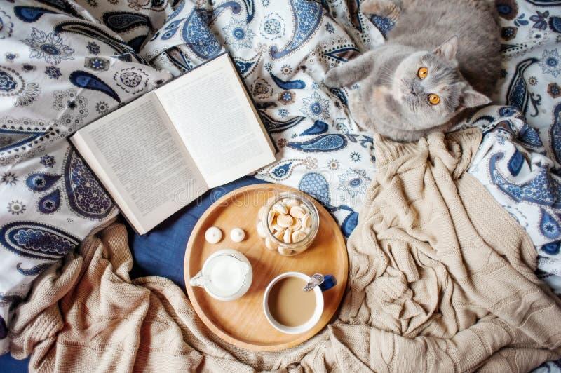 Buch, coffe, Katze lizenzfreie stockfotos