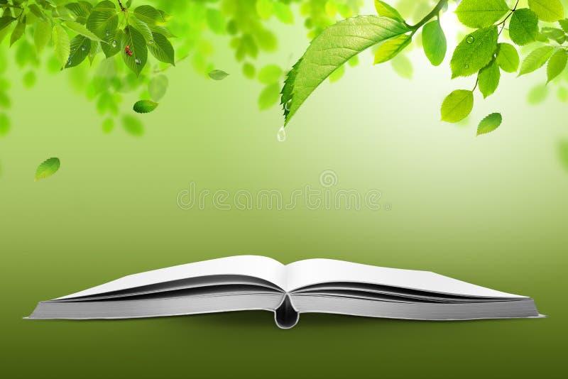 Buch der Natur stock abbildung