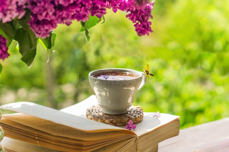 Buch, Gl?ser, Tasse Tee und Flieder auf einem h?lzernen Fenster Die Bienenfliegen sch?n ?ber den lila Blumenbl?ttern stockfotos