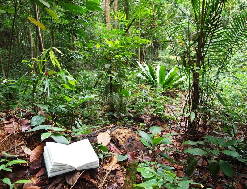 Buch im tropischen Regenwald lizenzfreie stockfotos