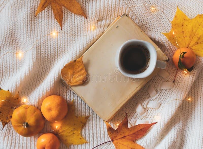 Buch, Kaffee, goldene Blätter, Orangen, Kürbis und Lichter auf einer weißen Strickjacke lizenzfreies stockbild