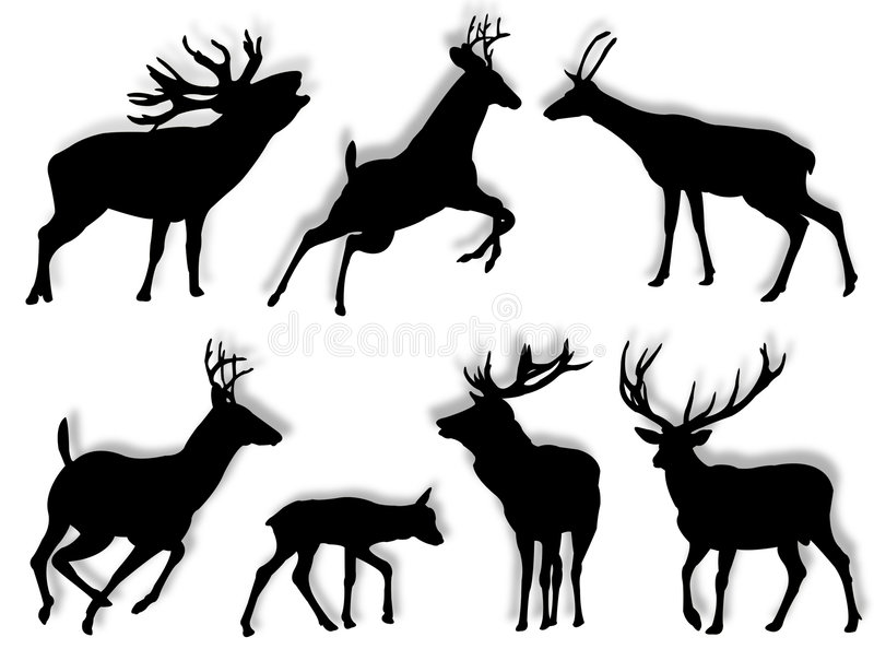 Buch silhouettes royalty free illustration