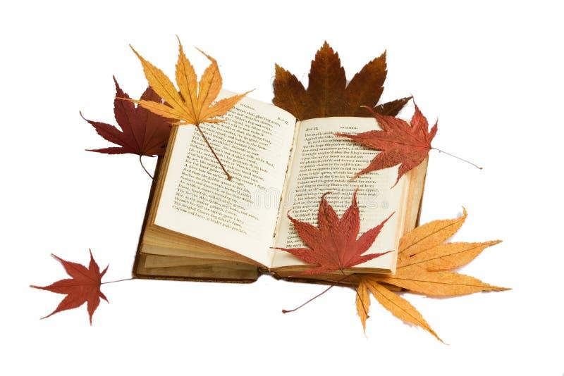 Buch und Herbstblätter lizenzfreies stockbild