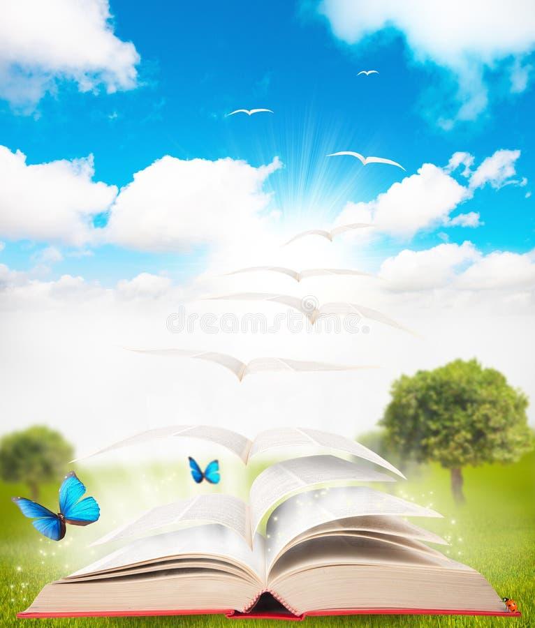 Buch und Natur lizenzfreies stockbild