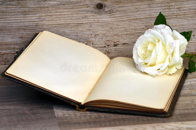 Download Buch und Rose stockfoto. Bild von römisch, blatt, büro - 26369898
