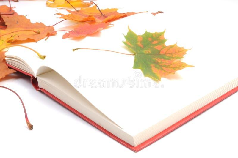 Buch wih Herbstblätter stockfoto