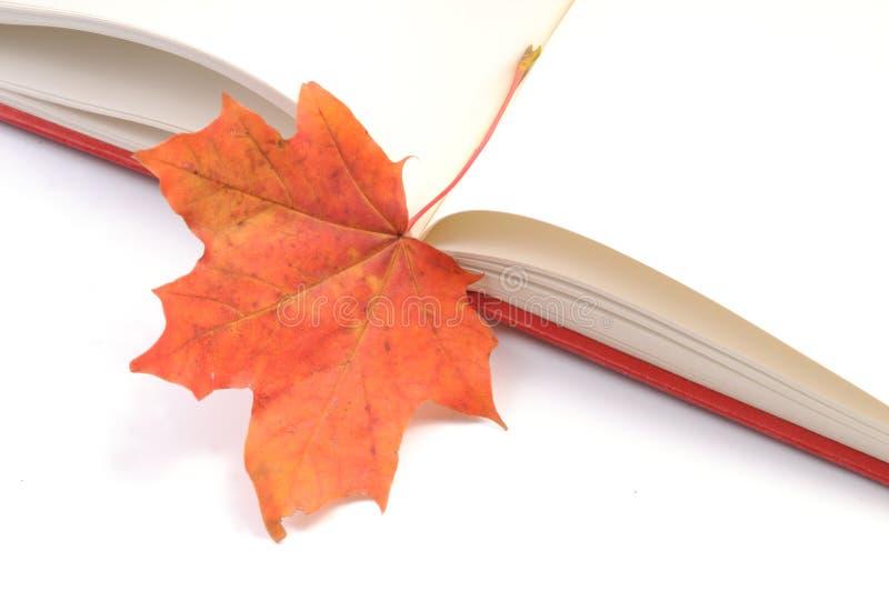 Buch wih Herbstblätter lizenzfreies stockfoto