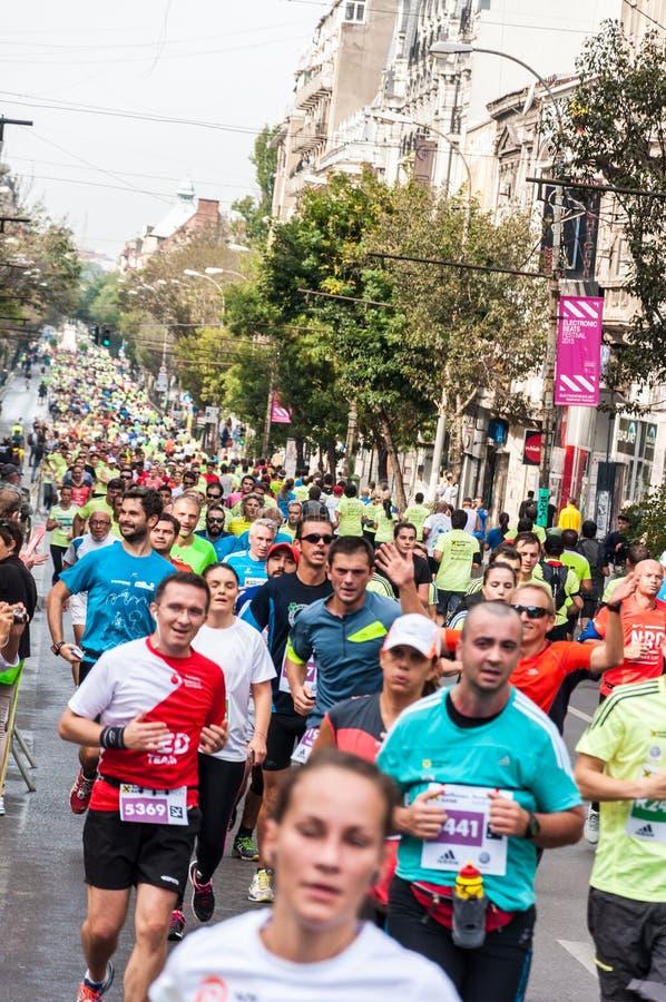 Bucharest Internationalmaraton 2015 royaltyfria bilder