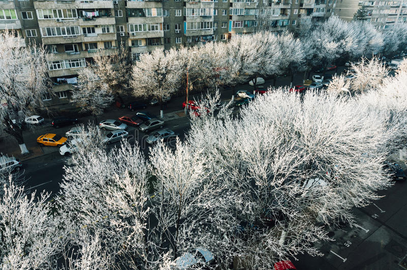 Bucharest, Romania with frost stock photos