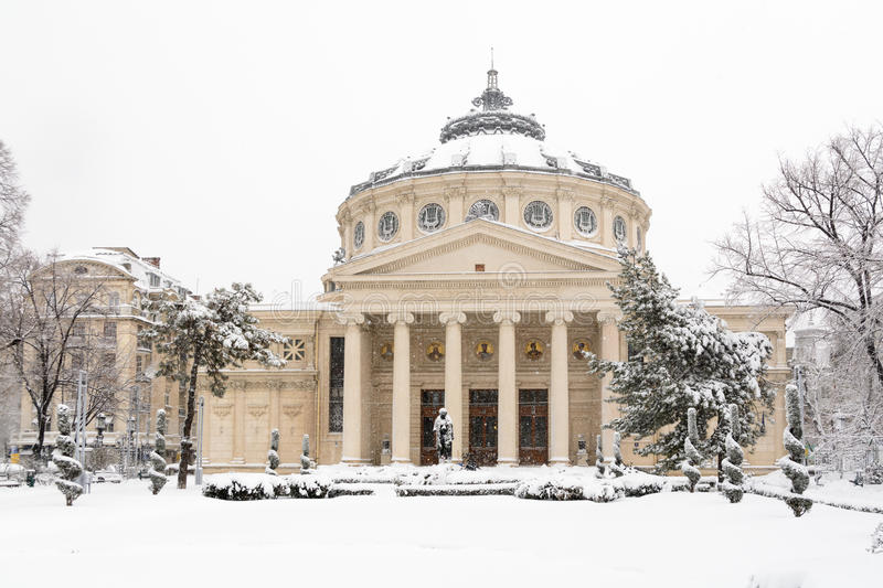 Bucharest Rumänien - Januari 17: Universitetfyrkant på Januari 17 royaltyfri bild