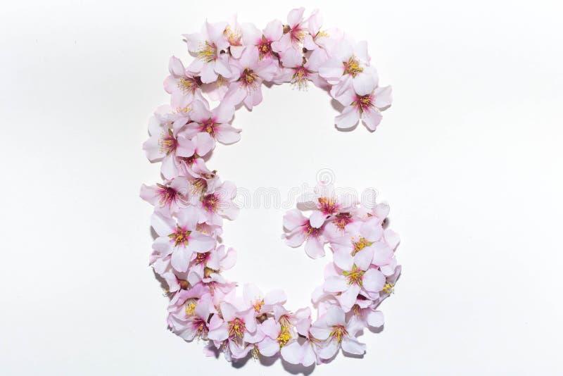 Buchstabe des englischen Alphabetes von den Blumen lizenzfreie stockbilder