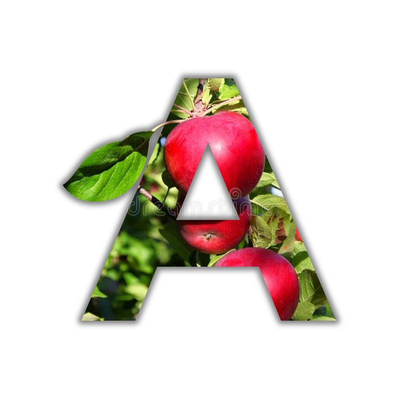 Buchstabe A machte von der frischen Frucht lizenzfreies stockbild