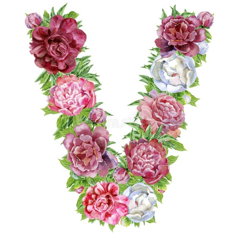 Buchstabe V von Aquarellblumen lizenzfreie abbildung