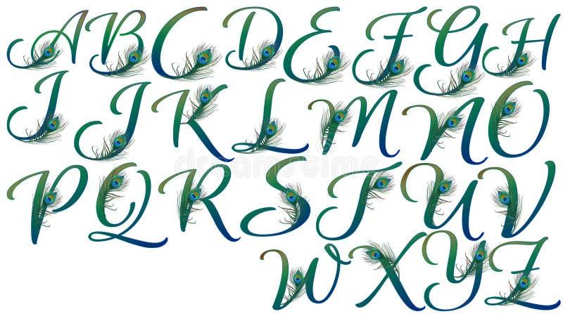 Buchstaben verziert mit Pfaufedern lizenzfreie abbildung