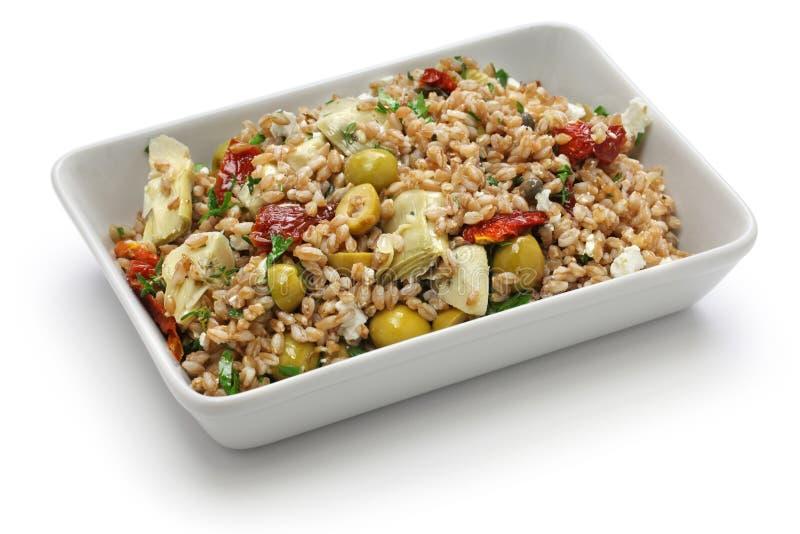 Buchstabierter Salat, italienische Küche lizenzfreies stockbild