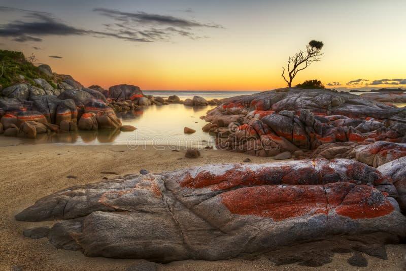 Bucht der geheimen Bucht Tasmanien der Feuer stockbilder