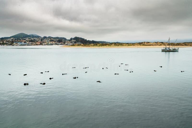 Bucht des Wassers, der Boote und der Schattenbilder der Schlafenseeotter lizenzfreie stockfotos