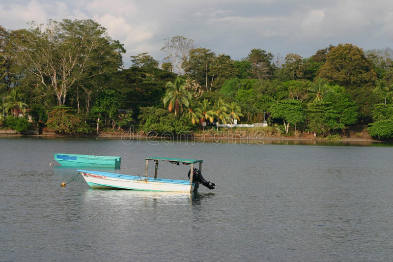 Bucht Puerto Jimenez lizenzfreie stockfotos