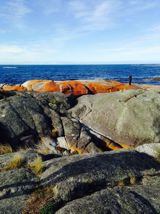 Bucht von Feuer-Felsen in Tasmanien lizenzfreie stockfotos