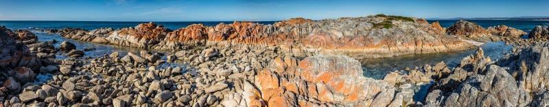Bucht von Feuern Panorama, Tasmanien, Australien während des Sommers lizenzfreies stockbild