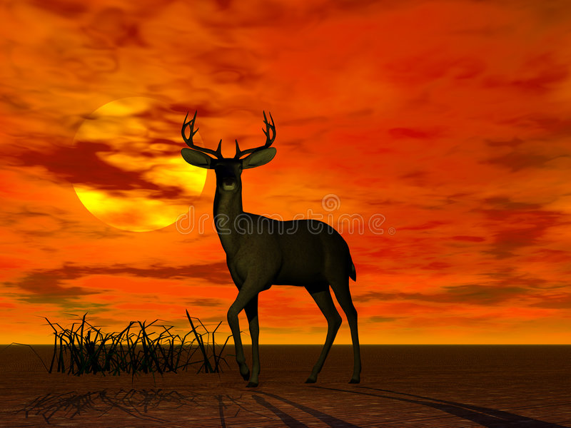 Buck. A rendering of a buck in the sunset
