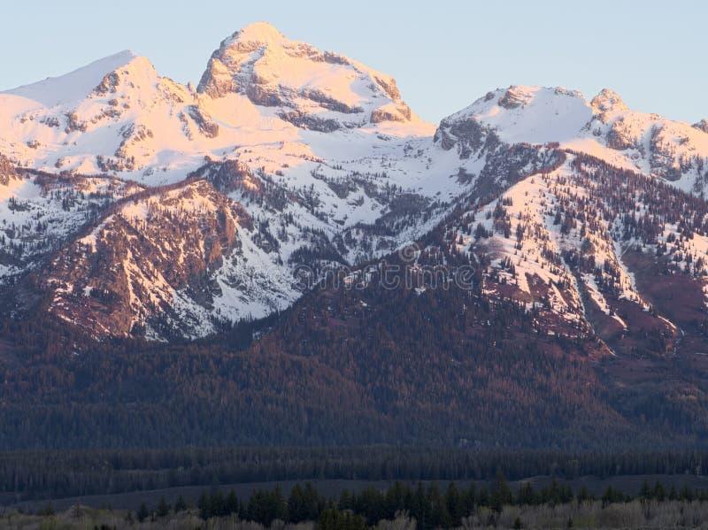 Buck Mountain arkivfoto