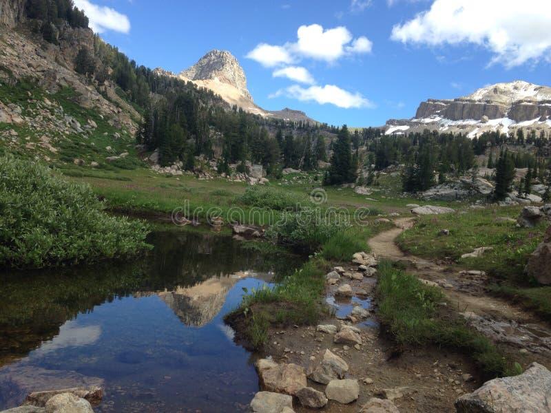 Buck Mountain photo libre de droits