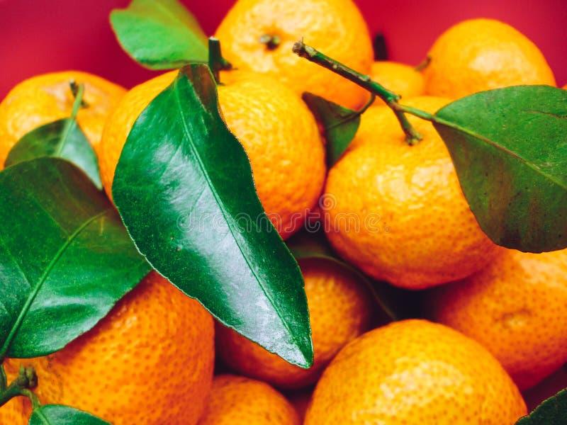 A bucket of mandarin orange royalty free stock photos