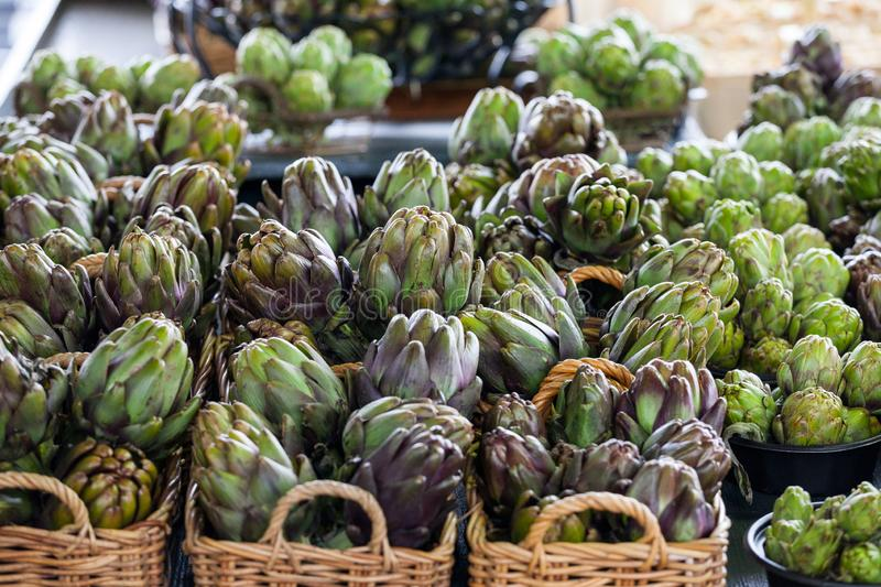 Buckets of Globe Artichokes for sale on a Canadian market in Montreal, Quebec. Picture of several buckets of Green Artichokes, on a Canadian Quebec market in stock image