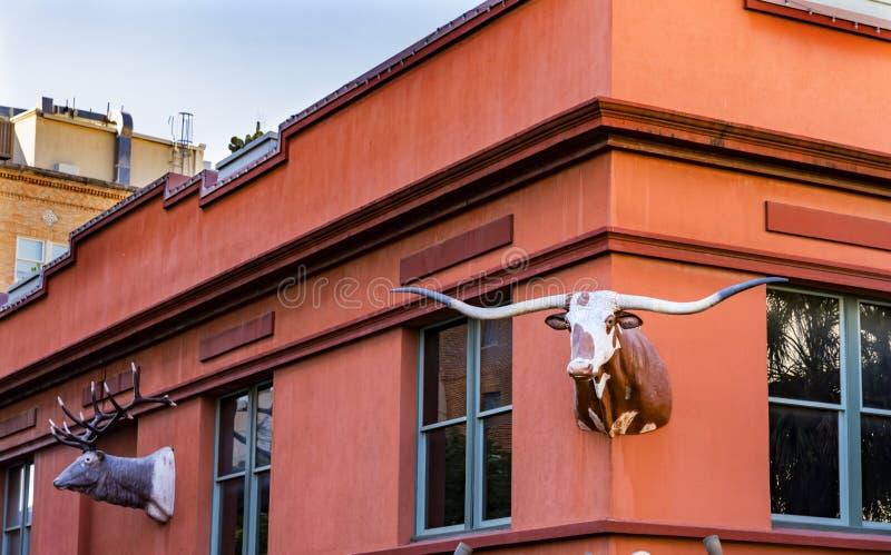 Buckhorn Saloon e Restaurante San Antonio Texas fotos de stock