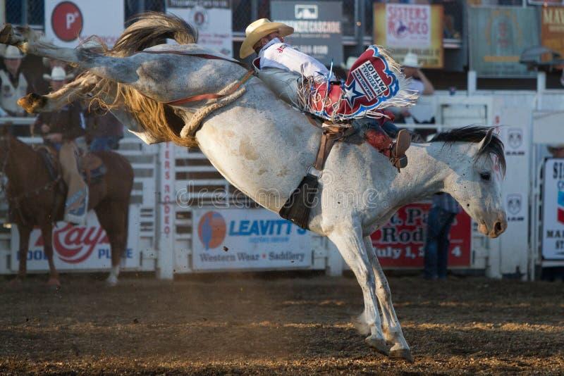 Bucking Bronc - Zusters, de Rodeo 2011 van Oregon royalty-vrije stock afbeeldingen