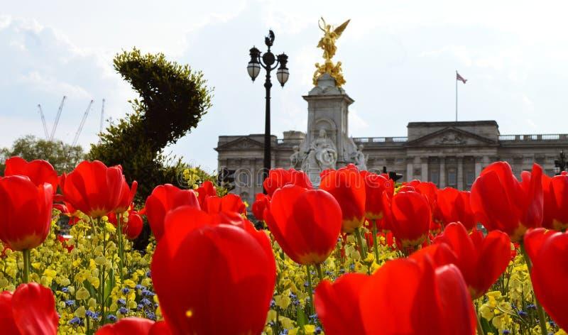Buckingham Palace fotografía de archivo libre de regalías