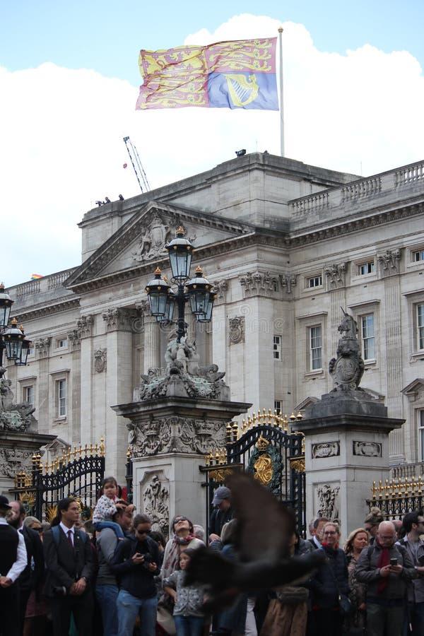 Buckingham Palace, Londres Reino Unido, o 8 de junho de 2019 - rainha Elizabeth Trooping a foto conservada em estoque da imprensa imagem de stock royalty free