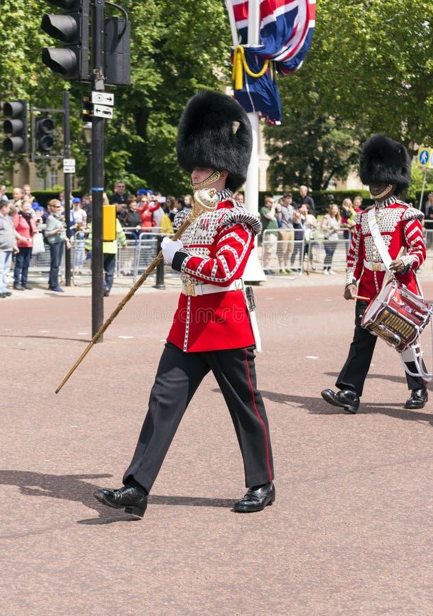 Buckingham Palace-Schutz lizenzfreie stockfotografie