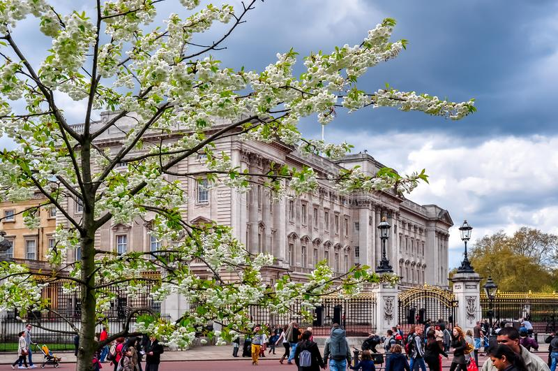 Buckingham palace in spring, London, UK stock image