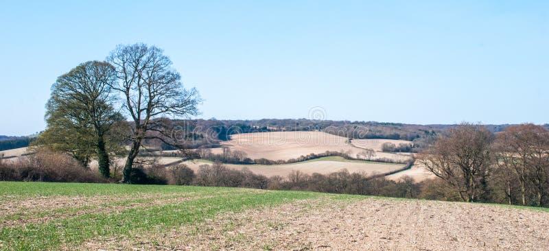 Buckinghamshireplatteland stock fotografie