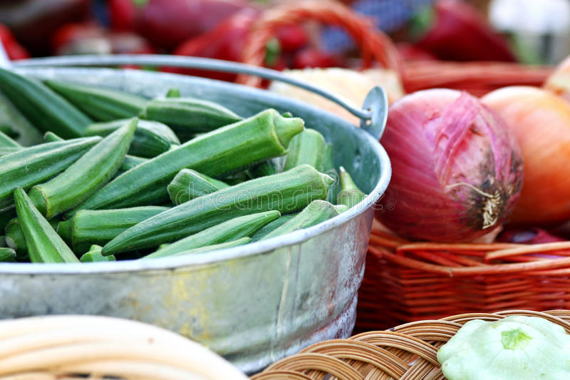 Bucket of Okra. Silver bucket filled with okra royalty free stock image