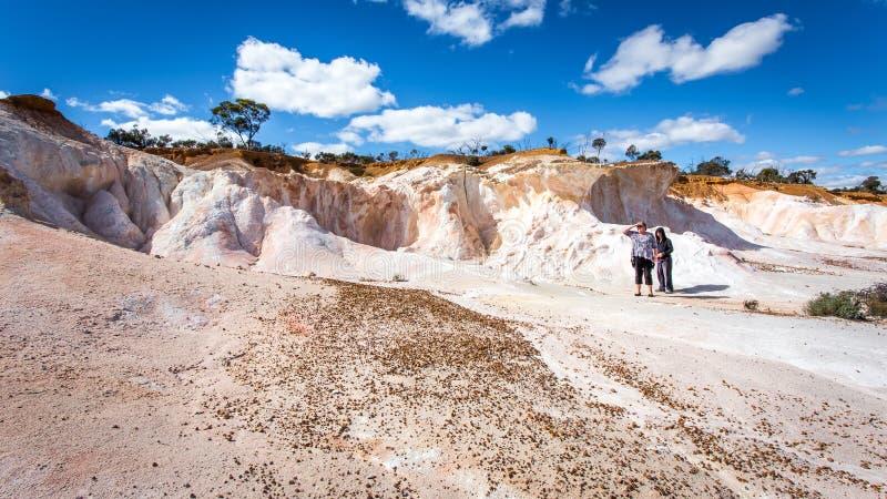 Buckleys脱离-彩绘沙漠 图库摄影