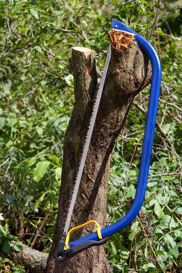Bucksaw bleu avec le traitement jaune images stock