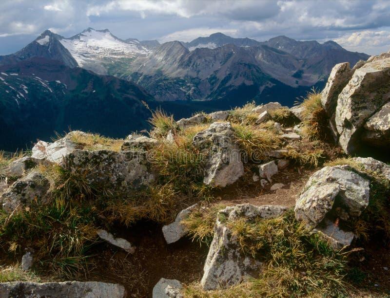 Buckskin przepustka, wałkoni się pustkowie, Biały Rzeczny las państwowy, Kolorado zdjęcie royalty free