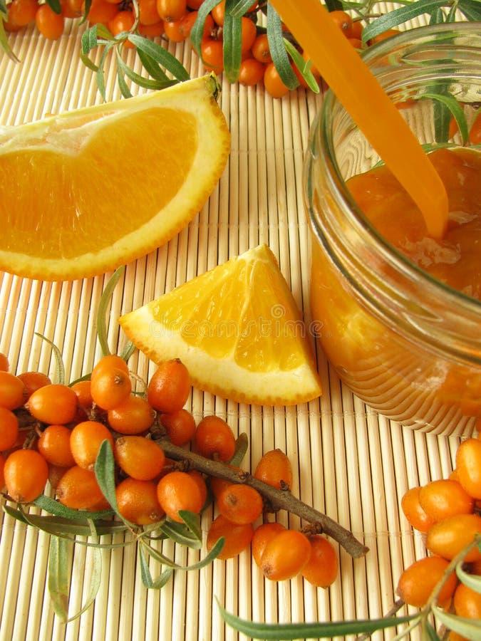 buckthorn θάλασσα πορτοκαλιών μ&alph στοκ εικόνες