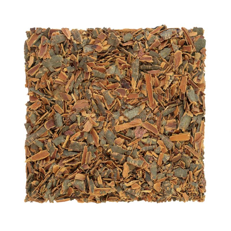 Buckthorn Bark Herb. Used in alternative herbal medicine to treat skin disorders, parasites, gallstones and has laxative properties on white background. Rhamnus stock photography
