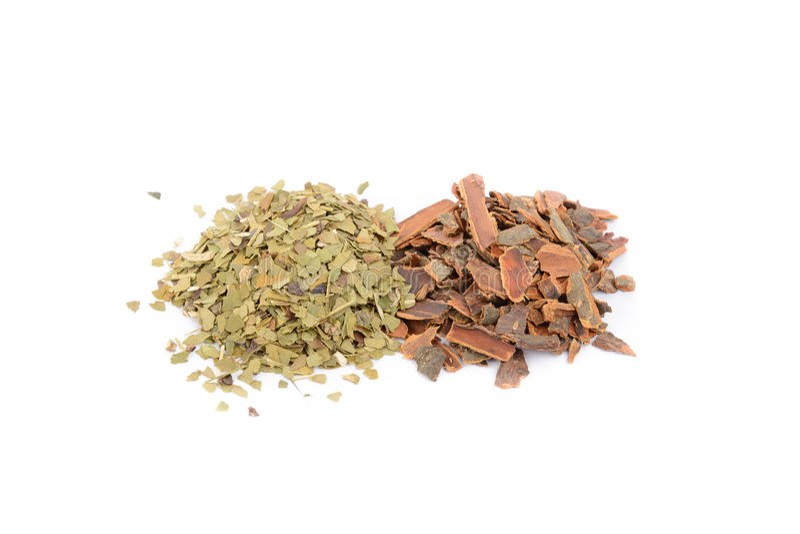 Buckthorn barkentyna, szturman obraz stock