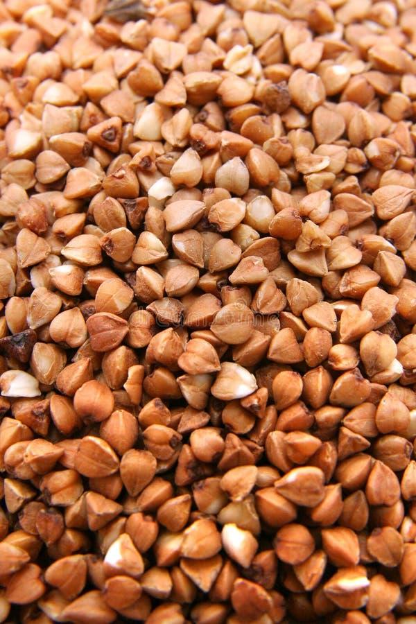 Buckweat lizenzfreies stockbild