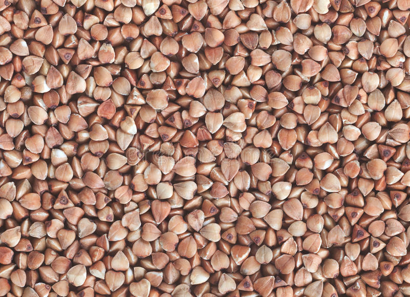 Buckweat grain macro background royalty free stock image