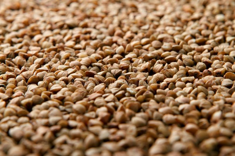 Close-up heap of buckwheat royalty free stock images
